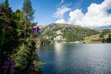 Panorama Hotel Turracher Höhe  Österrike